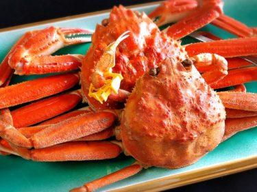 【海の幸の宝庫 福井】食べられる絶品の海鮮のフードロスをなくす復袋