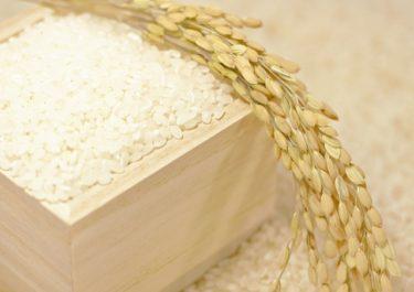 ふるさと納税でお米を買うメリットは?面倒な方でもこれを知れば注文したくなるはず!