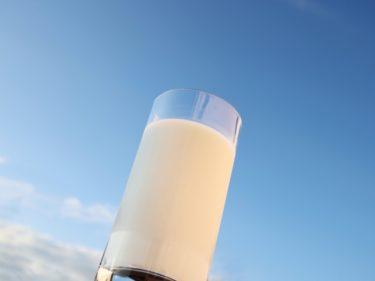 北海道の乳製品をお取り寄せ!チーズやバターなど厳選された北海道乳製品福袋