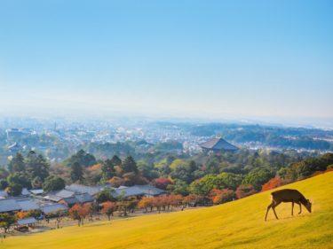 Go To Eat 奈良県のプレミアム付き食事券購入方法・利用可能店舗